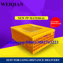 different size plastic transport crate duck crate for poultry farming