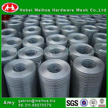 hot sale In Stock Roll Galvanized Welded Wire Mesh (Factory)