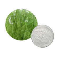GMP Factory Supply 100% Pure and Natural Wholesale White Willow Bark Extract Salicin for Arthritis and Cold Treatment