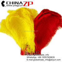 Trade Assurance Leading Supplier Used Wedding Party Decoration Wholesale Dyed Ostrich Feathers for Sale