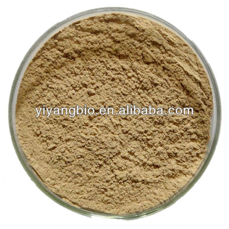 Supply green tea extraction polyphenols powder 50%-98%
