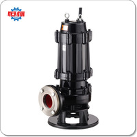 Hengbiao WQ Series pumps supplier factory 1hp 3hp 10hp sewage waster water 2 inch submersible pump price list