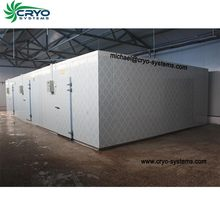 cold store machine , fruit vegetable storage equipment