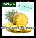 WISAPPLE GMP 100% Natural Plant Extract - Bromelain