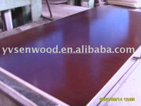 China brand film faced plywood uae for construction