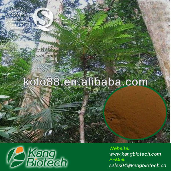 tongkat ali brown powder extract , sexual enhancement