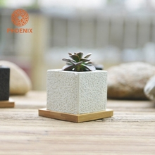 High Quality Tabletop Cheap Small White Cement Succulent Garden Pot