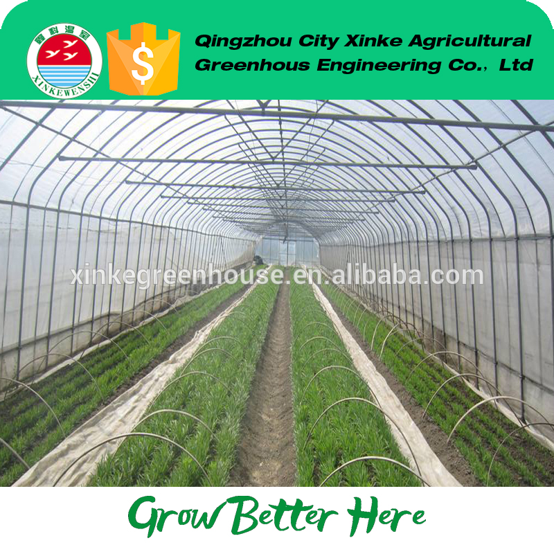 portable plastic single-span greenhouse winter Exported to Worldwide