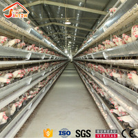 Factory supply cheap new design chicken layer cages