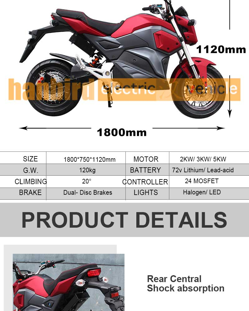 Fat Tire Electric MOTORCYCLE M7 Model sale in China