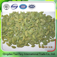 Promotional dried fruits green raisins