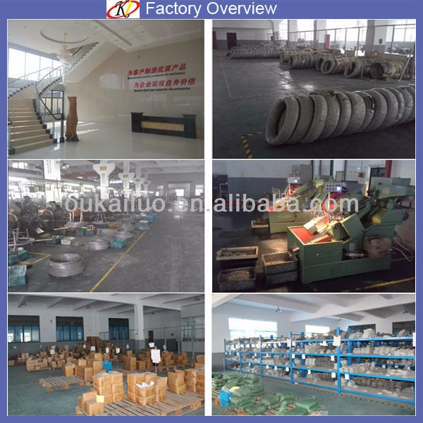 Ningbo Oukailuo Galvanized Torx Pan Head Machine Screw