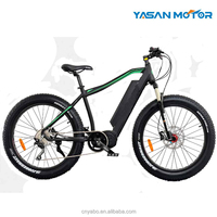 High Powerful 48V Lithium Battery and 500W 750W 1000W Mid Drive Motor Fat Tire Mountain Electric Bike