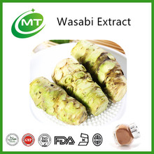 Free sample 12:1 high quality Wasabi Extract Powder