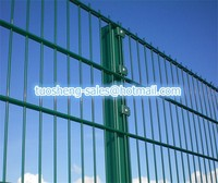 (manufacturer) Powder Coated Double Wire Security Fence /Welded Double Wire Mesh