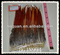 "6-8"" golden pheasant tail feather"