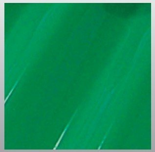 Green Economical Corrugated PVC/Vinyl Panels