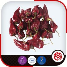 Dry Red Chillies From Gujarat