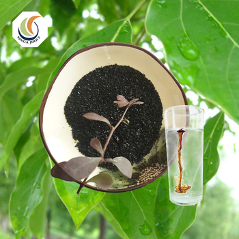 Hot sale Animal Feed Additive High Water Soluble Sodium Humate Powder