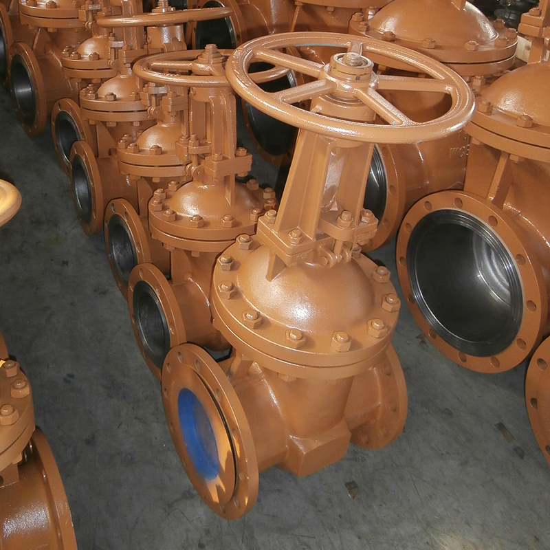 Hose 2.5 Steam Gate Valve
