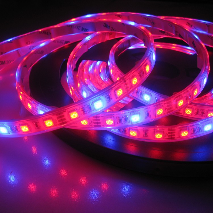 Super Brightness Waterproof Led Strip 5050 RGB IP68 DC12V Mix Color Red And Blue