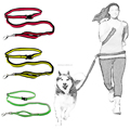 Berry Hands Free Retractable Running Dog Leash