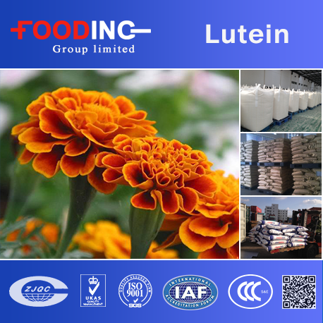 100% Natural Marigold Flower Extract Lutein Powder