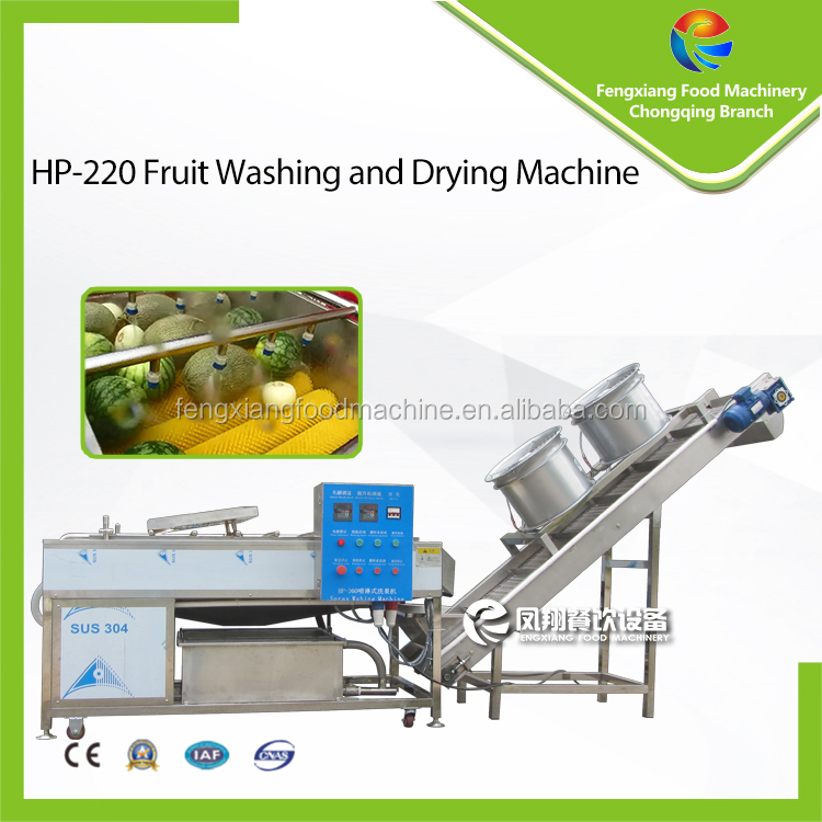 2017 New Style Spray Fruit Washing and Drying Machine