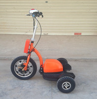 mypet/ gopet/ New Zappy 720WH remove life04 battery three wheel motorcycle