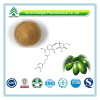 GMP Certificate Popular Herbal Olive Leaf Extract in bulk