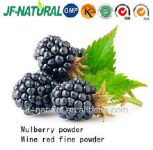 Natural Mulberry Powder