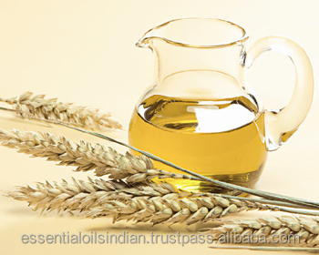 Top Quality Wheat Germ Oil ISO GMP