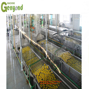 Custom made mushroom production line with high quality