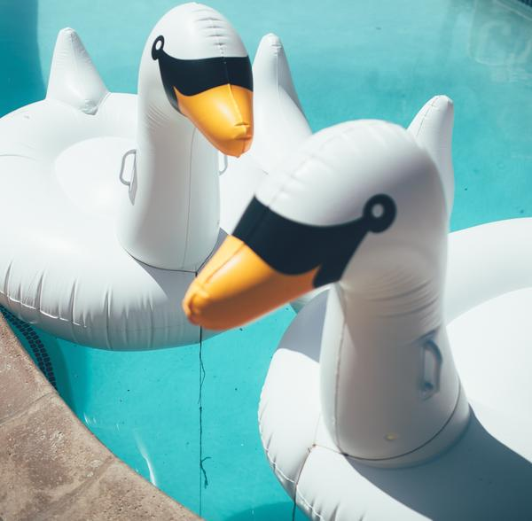 giant pool lounger float inflatable floating swan swan air mattress water floaties