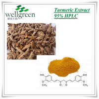 high quality plant extract powder curcumin