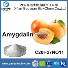 Gaoyuan Factory Supply Best Quality Wholesale Price Raw Material Bitter Apricot Seed Extract 80% to 98% Amygdalin Powder