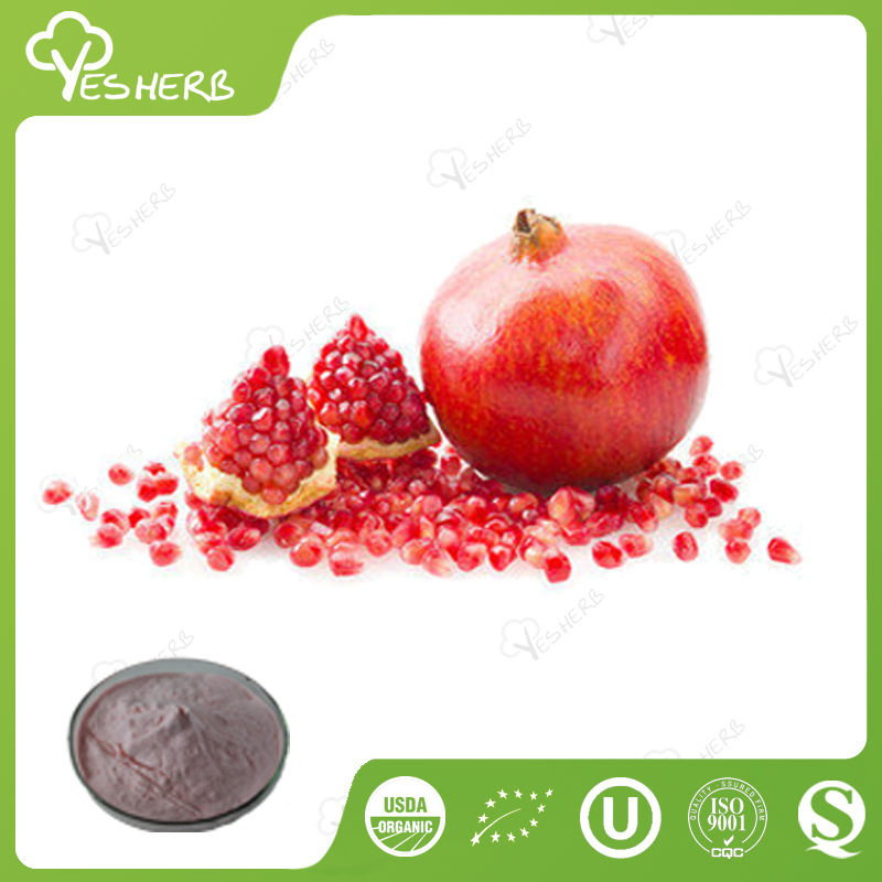 HACCP factory supply pomegranate juice powder pomegranate powder