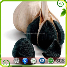 Manufacture Supply Black Garlic Extract Black Garlic Seed Extract 4:1,10:1 TLC