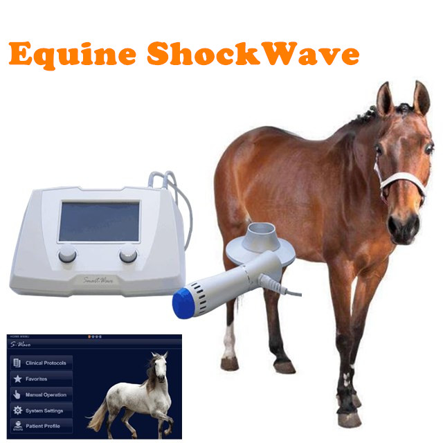veterinary shockwave therapy machine/shock wave for horse