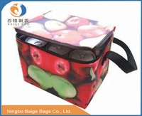 laminated pp woven pp non woven foldable recycling cooler beer bag