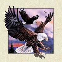 China factory sale american eagle picture 5d lenticular printing poster