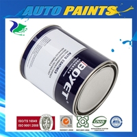 Mirror-Effect Car Paint Clear Coat Professional Supplier