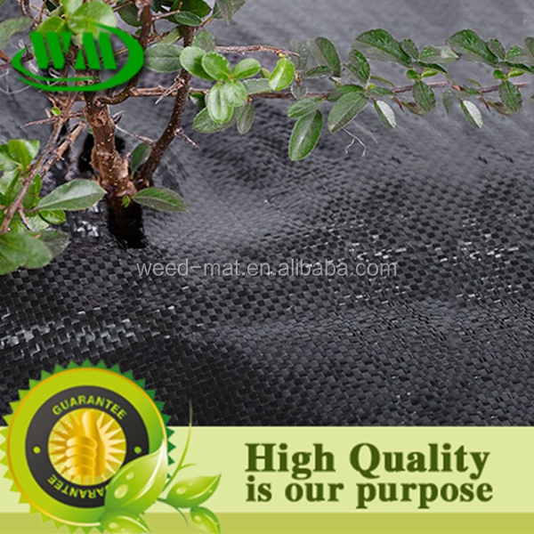 pp/pe material anti-uv weed mat ground cover