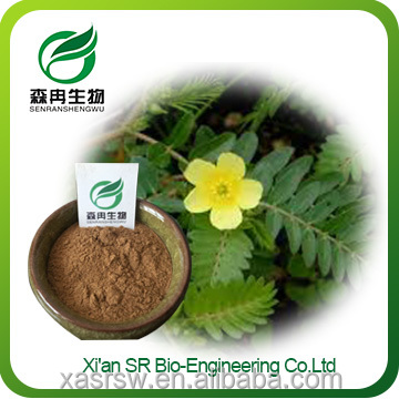 100% Natural Plant Extract Tribulus Terrestris Saponins 20-98%/Factory Supply High Quality Tribulus Terrestris Extract Powder