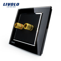 LIVOLO Home Wall Sound Acoustics Socket