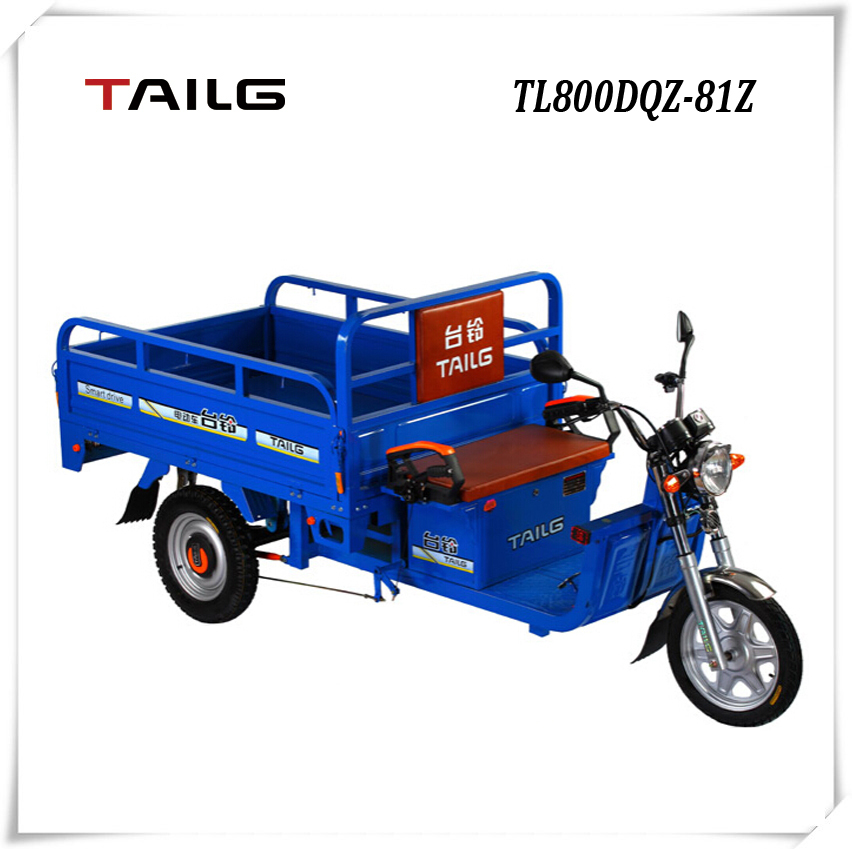 china donguan tailg steel Multifunction economic electric cargo tricycle