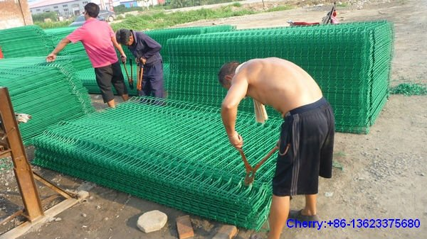 PVC coated welded wire mesh panel (ISO9001:2000Certificated)