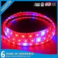 Buy SP113D 560W Led Garden Grow Light ecure with the on/off Switch ...