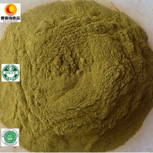 China Top 8 Factory Supplier Exporting Hot Dry Green Chilli Powder Well Received in Indonesia, Korea Market