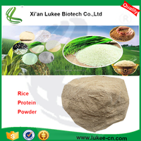 Food grade brown rice protein isolate supplier in china